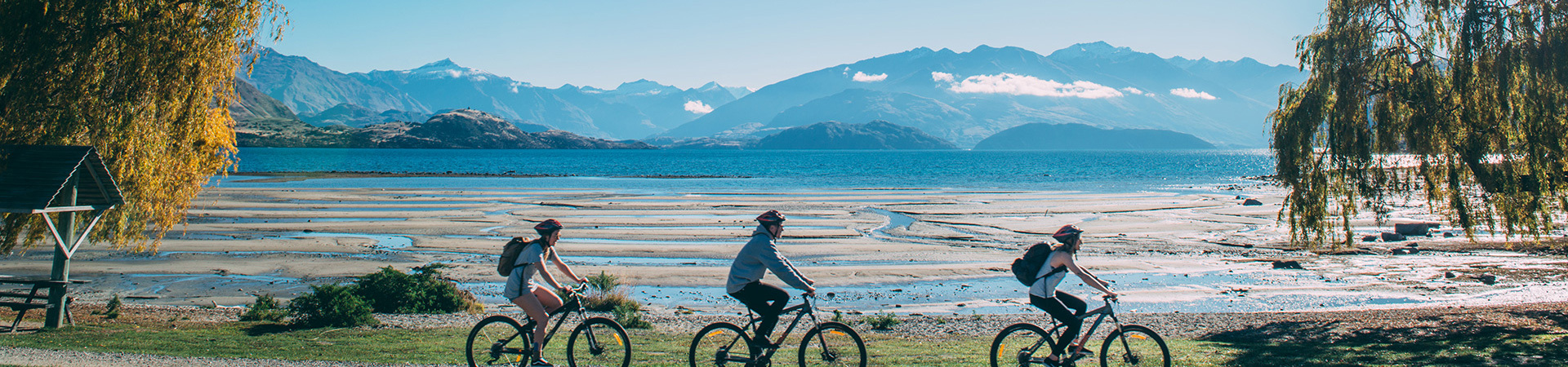 Lake Wanaka cyclists