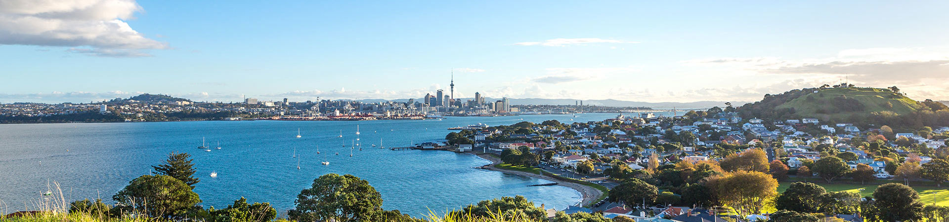 View of Auckland and its harbour, North Island New Zealand