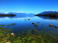 Te Anau Reflection