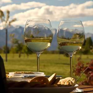 new zealand food and wine