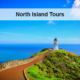 Tour the North Island's beaches, islands, bays, volcanoes, Maori heritage and wonderful cities